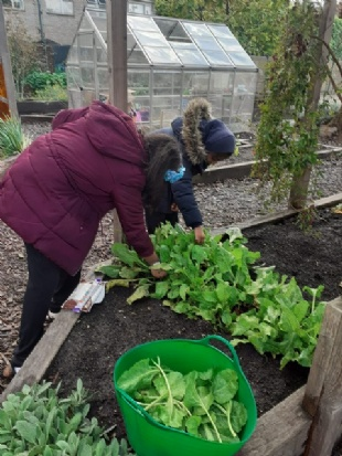 TOWER HAMLETS PRIMARY SCHOOL HIRES GARDENER IN RESIDENCE TO TEACH SUSTAINABILITY AT NEW 'EDIBLE PLAYGROUND'